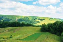 mooi de zomerplatteland in bergen royalty-vrije stock afbeelding