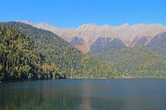 Mooi die bergmeer Ritsa, Abchazië, Georgië, door gemengde bergbossen en subalpiene weiden wordt omringd stock foto