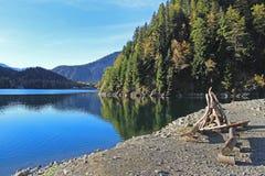 Mooi die bergmeer Ritsa, Abchazië, Georgië, door gemengde bergbossen en subalpiene weiden wordt omringd stock afbeelding