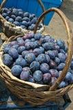 Mooi en heerlijk fruit van pruim Stock Foto