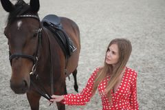Mooi en sexy blonde met grote borsten in een rode kleding en een paard van bruine kostuums Royalty-vrije Stock Afbeeldingen