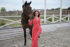 Mooi en sexy blonde met grote borsten in een rode kleding en een paard van bruine kostuums Stock Fotografie