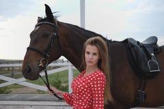 Mooi en sexy blonde met grote borsten in een rode kleding en een paard van bruine kostuums Royalty-vrije Stock Foto