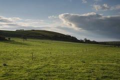 Mooi Engels plattelandslandschap over gebieden bij zonsondergang Royalty-vrije Stock Foto