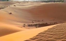 Mooi enorm en onaangeroerd zandduin stock foto