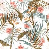 Mooi Exotisch Retro uitstekend tropisch wild bos met palm RT vector illustratie