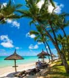 Mooi exotisch strand in Trou aux Biches, Mauritius stock foto