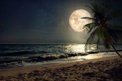 Mooi fantasie tropisch strand met Melkwegster in nachthemel, volle maan Stock Foto's