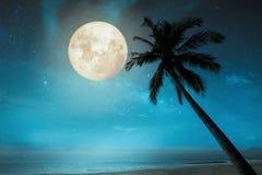 Mooi fantasie tropisch strand met volle maan Stock Fotografie