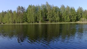 Mooi Fins meer met groene bosachtergrond stock video