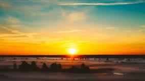 Mooi Forest On Sunrise Ochtendmist op Weide Royalty-vrije Stock Foto