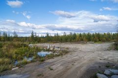 Mooi Forest Surgut Russia 06 09 2015 stock foto