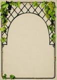Mooi frame met wijnstokken vector illustratie