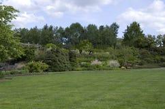 Mooi gazon in tuin Royalty-vrije Stock Fotografie