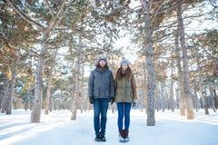 Mooi gelukkig paar die zich in de winterpark bevinden Stock Fotografie