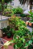 Mooi gemodelleerd terras van een huis met bloemen en installaties binnenplaats Bloeiende tuin royalty-vrije stock foto