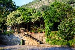 Mooi gemodelleerd terras van een huis met bloemen, klimop en installaties binnenplaats Bloeiende tuin stock fotografie