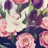 Mooi gevoelig boeket van bloemen Stock Afbeelding