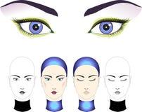 Mooi gezicht voor make-up Stock Foto's