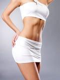 Mooi gezond vrouwelijk lichaam stock afbeelding