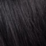 Mooi glans zwarte haarachtergrond en textuur Stock Fotografie
