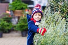Mooi glimlachend weinig Kerstmisboom van de jongensholding Royalty-vrije Stock Afbeelding