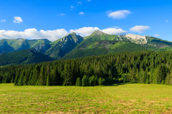 Mooi groen de zomerlandschap van Tatra-Bergen in Zdiar-dorp, Slowakije Stock Foto's