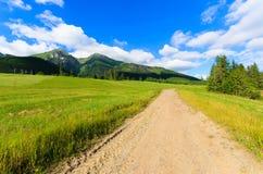 Mooi groen de zomerlandschap van Tatra-Bergen in Zdiar-dorp, Slowakije Stock Fotografie