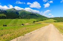 Mooi groen de zomerlandschap van Tatra-Bergen in Zdiar-dorp, Slowakije Stock Afbeeldingen