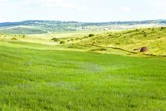 Mooi groen landschap met hooi stock fotografie