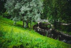 Mooi groen park Stock Afbeelding