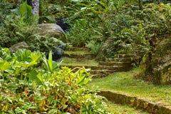 mooi groen park, in de zomer royalty-vrije stock afbeeldingen