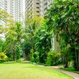 Mooi Groen Park met het Winden van Weg Stock Afbeelding