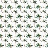 Mooi helder leuk groen tropisch mooi prachtig bloemen kruiden de zomerpatroon van Hawaï van een strandzonsondergang, palm, overze royalty-vrije illustratie