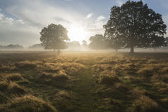 Mooi het plattelandslandschap van de de Herfstdageraad Royalty-vrije Stock Foto