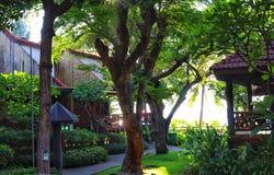 Mooi huis in groene tuin stock afbeeldingen