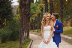 Mooi huwelijkspaar, gelukkige bruid en bruidegom Stock Foto