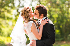 Mooi huwelijkspaar in park Zij kussen en koesteren elkaar Stock Fotografie