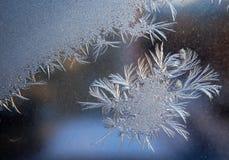 Mooi ijzig natuurlijk patroon op de wintervenster stock foto
