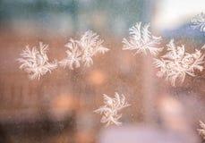 Mooi ijzig natuurlijk patroon op de wintervenster stock afbeeldingen