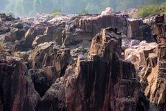 Mooi Indisch landschap in Gharial-Heiligdom Stock Afbeelding