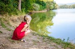 Mooi jong geitje door de rivier Stock Afbeelding