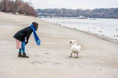 Mooi jong meisje in de zwarte laag die de zwaan op het strand voeden dichtbij rivier of meerwater in het koude de winterweer, die royalty-vrije stock afbeeldingen