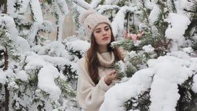 Mooi jong meisje in een sneeuwbos stock video