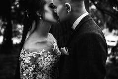Mooi jong paar die in de herfstpark helder glimlachen lopen royalty-vrije stock foto's