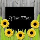 Mooi kader voor foto met zonnebloemen Royalty-vrije Stock Foto's