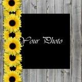 Mooi kader voor foto met zonnebloemen Royalty-vrije Stock Afbeelding