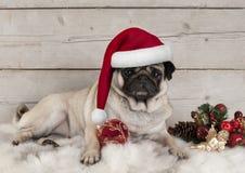 Mooi Kerstmispug hondpuppy die op schapehuiddeken liggen met feestelijke ornamenten stock foto's