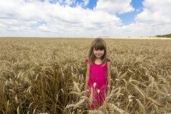 Mooi kindmeisje die zich op het gele gebied van de tarwezomer bevinden stock foto