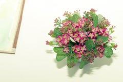 Mooi klein roze bloem en waterschilderijenbeeld op wit stock afbeelding
